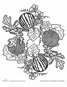 This cantaloupe and watermelon mandala is a juicy coloring page for your child. Encourage healthy eating with this cantaloupe and watermelon mandala. Cool Coloring Pages, Mandala Coloring Pages, Adult Coloring Pages, Free Coloring, Coloring Worksheets, Paper Drawing, Food Drawing, Line Drawing, Bullet Journal Layout