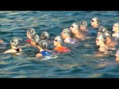 Highlight reel from the 2011 series. Triathlon, Penguins, Highlight, Nissan, Events, Animals, Lights, Happenings, Animales