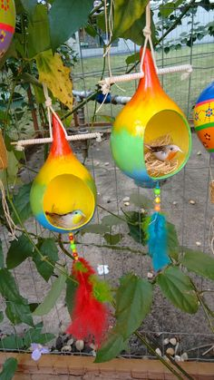 How to Craft with Gourds Handmade Crafts, Diy And Crafts, Crafts For Kids, Arts And Crafts, Decorative Gourds, Hand Painted Gourds, Gourds Birdhouse, Birdhouse Designs, Spring Photography