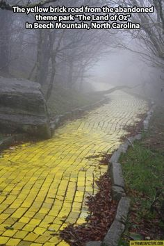 """the mist of the mountain fog, highlighting the yellow, curving road, inviting you to travel at your own risk down the yellow brick road. The yellow brick road from the abandoned theme park """"The Land of Oz"""" in Beech Mountain, North Carolina Oh The Places You'll Go, Places To Visit, Beech Mountain, Land Of Oz, Yellow Brick Road, All Nature, Wizard Of Oz, Mellow Yellow, Abandoned Places"""