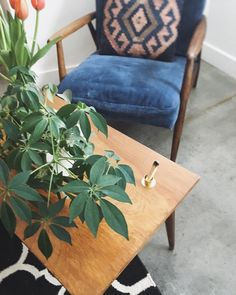 The perfect holder for your palo santo. #Cambie #Design #Palosanto #holywood #Brass #handmade #MadeinCanada