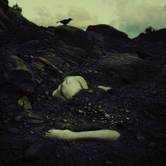 the fossils we leave behind by brookeshaden, via Flickr Love her work check her out on Flickr brilliant