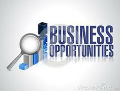 Best Online Business Opportunities for Home Based Business