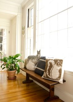 Love this idea perhaps for a hallway: a simple bench with lovely cushions.