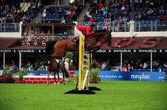 Carlina IV SCHWIZER Pius SUI MA/9/HOLST/Bay/Carvallo//Pro Horse International
