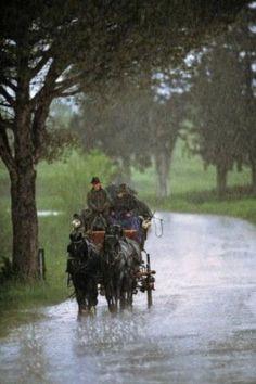 **Rain