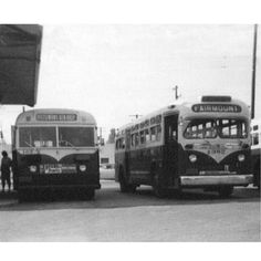 This photograph shows two buses discharging passengers behind the brick station building at the Poplar Street Loop (1950s).  Within 5 years after the streetcars were taken out of service, the trolley infrastructure was removed and the buses completely took over. In May of 1971, the Denver Tramway Company sold it's entire assets and operations to the City and County of Denver. This city and county operated transit service would eventually become known as the Regional Transportation District.