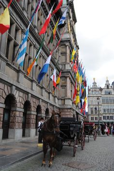 The carriage is waiting for the wedding couple to come out of city hall in Antwerp./J.Stolte