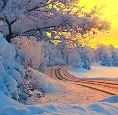 Winter road (Norway) by Paul-Erik Plaum ❄️cr.