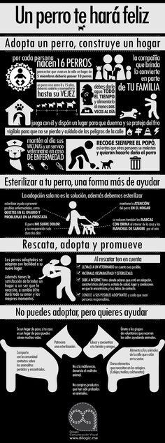 http://unperroteharafeliz.blogspot.comAdopta, rescata y promueve el buen cuidado de los perros #dogs #pets #adoption