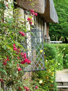 English country garden, Tudor house style, Madelief