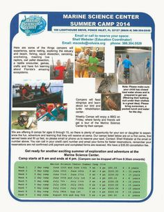 Marine Science Center Summer Camp 2014 in Ponce Inlet | Flagler County Family Fun