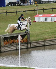 Classic Gold Rush ridden by Alycia Burton The pair do puissance without tack