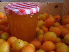 Le kumquat est un petit agrume dont l'écorce parfumée et légèrement amère est idéale pour confectionner des fruits confits et des confitures. Nous vous proposons de découvrir la recette de la confiture de kumquat dont le goût rappelle à la fois l'orange amère et la mandarine. par Audrey