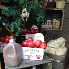 Image result for farm to table decorating apples