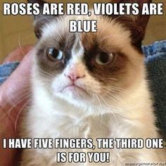 roses are red, violets are blue i have five fingers, the third one is for you! | Grumpy Cat Face | Meme Generator