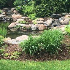Pond Renovation#pond #renovation Garden Pond Design, Japanese Garden Design, Japanese Gardens, Japanese Garden Backyard, Japanese Garden Landscape, Zen Rock Garden, Japan Garden, Pond Landscaping, Ponds Backyard