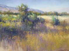 Evening on the Malheur by Richard McKinley Pastel ~ 11 x 14. I especially like how he handled the tall grass & small flowers here.