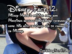 Cool Disney fact even though I already knew it Disney World Facts, Disney Princess Facts, Disney Fun Facts, Disney Jokes, Cute Disney, Disney Disney, Disney Princesses, Disney Sayings, Disney Trivia
