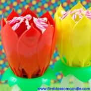 Good Luck - 1 Red & 1 Yellow Fire Blossom  www.fireblossomcandle.com  A unique cake candle for your birthday party