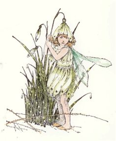 Winter ~ Snowdrop ~ Fairy
