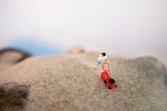 This selection of miniature artists snap photos of miniature people in tiny worlds. This selection of miniature photography showcases their best work! Miniature Photography, Toys Photography, Colourful Photography, Micro Photography, Landscape Photography, Small World, Miniature Calendar, Modern Metropolis, Mini Things