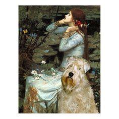 Wheaten Terrier, Shih Tzus, Painting, Art, Art Background, Painting Art, Kunst, Paintings, Performing Arts