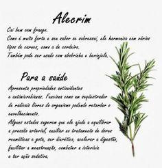 Alecrim.