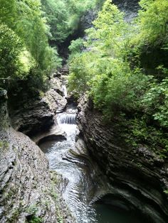 Watkins Glen State Park, New York | Watkins Glen State Park - New York | Flickr - Photo Sharing!