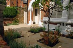 Front garden in Wandsworth by Lisa Cox Designs