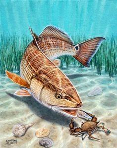 New Saltwater Fishing Boats Flats Florida Keys Ideas Usa Fishing, Deep Sea Fishing, Gone Fishing, Trout Fishing, Kayak Fishing, Fishing Tips, Fishing Boats, Fishing Vest, Fishing Charters