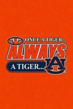 Always a Tiger!
