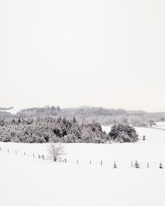 Unwind in the countryside. Winter Photography - Subtle colour photograph of a rolling country fields on a snowy winter day. Serenity for your home decor. TITLE: Frosty Fields OPEN EDITION UNMATTED and UNFRAMED * Get it as a large ready to hang canvas -