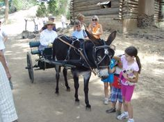 Don't miss a chance to see living history, at Las Golondrinas, Santa Fe, New Mexico! Bring the entire family!