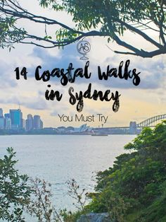 Sydney really is a walker's paradise – anywhere green you look along the harbour (which is everywhere) will more than likely have a really cool walking trail nestled in it amongst the trees, foliage, beaches, and cliffs. And once I discovered this, I made Sydney Australia, Western Australia, Australia Trip, Victoria Australia, Australia Holidays, Auckland, Koh Lanta Thailand, Sydney Beaches, Australia Travel Guide