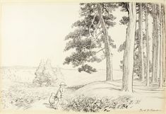 EH Shepard, By-and-by they came to an enchanted place on the very top of the Forest from The House at Pooh Corner. Courtesy of Sotheby's London.