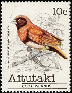 Chestnut-breasted Mannikin stamps - mainly images - gallery format