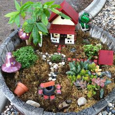 Love the tile squares used for stepping stones & rocks in the circular pattern around the plant in the middle....cute...