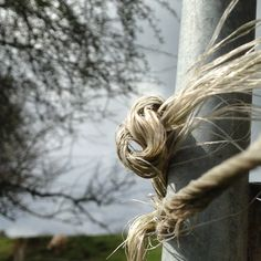 April 2016 - Knot Bailing twine and the farmers knot. Used to fix all manner of problems at Llwyn Celyn. House Foundation, Medieval Houses, Brecon Beacons, Listed Building, Farmers, Twine, Wales, Knot, National Parks