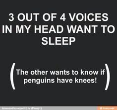 The other voice also wants to know why I find this so funny? ... or is it just the sleep deprivation kicking in?☺