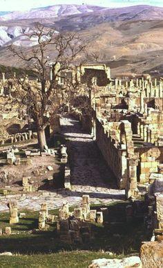 Roman road in Djemila, Algeria
