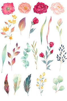 Watercolor Clipart, Watercolour Painting, Watercolor Flowers, Painting & Drawing, Painting Canvas, Art Floral, Rose Clipart, Photo Deco, Peony Rose