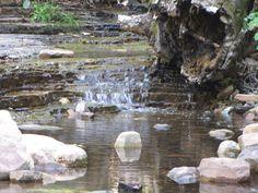 Workman creek by Kara Jensen
