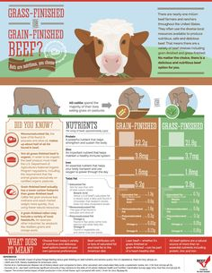 Helping you understand the differences of grass-finished vs. grain-finished beef choices!!