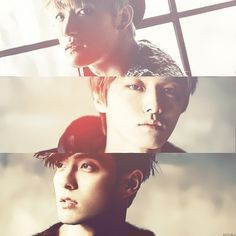 Royal Pirates! Hurry up and come out with new music :D