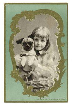 Victorian Trade card 1846   ebay