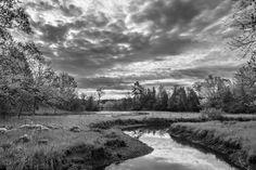 Milne Pond, Markham, Ontario.