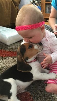 who doesn't love puppies and babies?