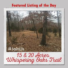 Featured Listing of the Day: 15 & 20 Acres Whispering Oaks Trail    Contact the #1 real estate team in Jonesboro today and #JoinUs in the search for your dream home!   #burchandco #realestate #realtor #arkansas #jonesboro #jonesbororealestate #arkansasrealestate #property #forsale #houseforsale #listingoftheday #featured #home #buy #buyrealestate #newhome  #househunting