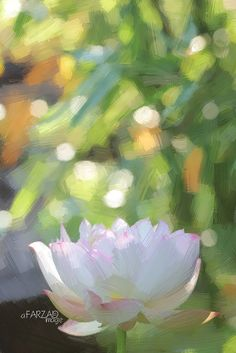 Lotus Flower Paintings - Image Based - Akvis Oil Paint Fil… | Flickr Flower Painting Images, Lotus Flower Images, Oil Painting Flowers, Painting & Drawing, Flower Paintings, Lotus Flowers, Paint Filter, Design Inspiration, Drawings